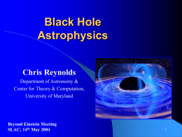 X-ray probes of black hole disks