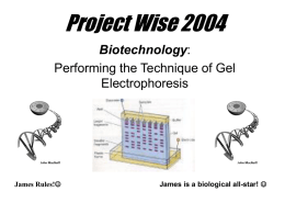 Project Wise 2004 - Monroe Community College