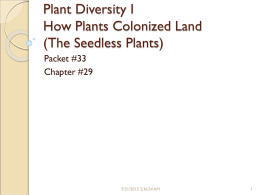 Plant Diversity How Plants Colonized Land