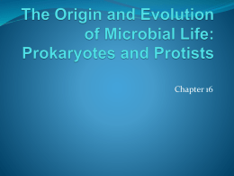 The Origin and Evolution of Microbial Life: Prokaryotes
