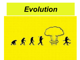 Evolution - Sauer Science