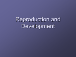 Reproduction and Development - Lincoln
