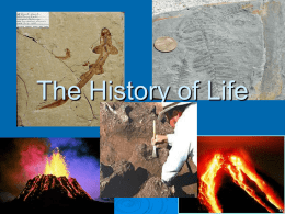 The History of Life - Kentucky Department of Education