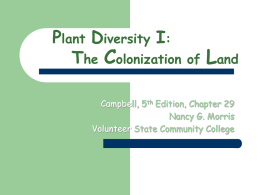 Plant Diversity I: The Colonization of Land