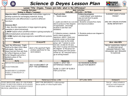 Science @ Deyes Lesson Plan