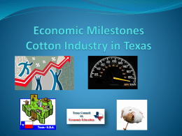 Play - Texas Council on Economic Education