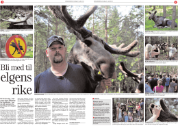 Bli med til - Dalslands Moose Ranch