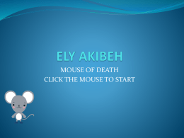 ELY AKIBEH - Cookie Setton