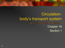 Circulationbody's transport system Chapter 16 Section 1 Key Concepts      What are the functions of the cardiovascular system? What is the function and structure of the heart? What.
