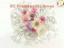IEC Friends are like flowers   They add color to your life   They spread fragrance   They wipe your tears   They make you laugh   They are always.