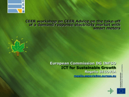 CEER workshop on CEER Advice on the take-off of a demand response electricity market with smart meters  European Commission DG INFSO ICT for Sustainable.