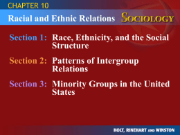 CHAPTER 10  Racial and Ethnic Relations Section 1: Race, Ethnicity, and the Social Structure  Section 2: Patterns of Intergroup Relations Section 3: Minority Groups in the.