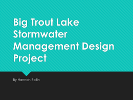 Big Trout Lake Stormwater Management Design Project By Hannah Rollin    Problem   Valuable Trout Lake for the state of Minnesota  Excess sediment and stormwater flows directly into.