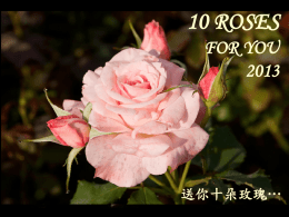 10 ROSES FOR YOU 2013 送你十朵玫瑰…
