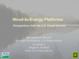 Wood-to-Energy Platforms: Perspectives from the U.S. Forest Service  Rob Doudrick, Director Resource Use Sciences, U.S.