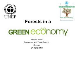 Forests in a  Steven Stone Economics and Trade Branch, Geneva 6th June 2011 What is a Green Economy? A Green Economy is one that results.