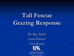Tall Fescue Grazing Response Dr. Ray Smith Laura Schwer Tom Keene Methods Two similar tall fescue plants were chosen from greenhouse.  Both were managed the same.