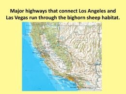 Major highways that connect Los Angeles and Las Vegas run through the bighorn sheep habitat.