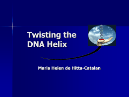 Twisting the DNA Helix Maria Helen de Hitta-Catalan What are Genetically Modified Food (GMF) ?  Food  that contain an added gene sequence  Food that have.