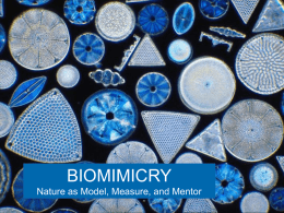 BIOMIMICRY Nature as Model, Measure, and Mentor Webinar Agenda  Introduction  to Biomimicry  The Scientific Approach to Biomimicry  Applying Biomimicry  Emerging Topics in.