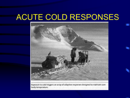 ACUTE COLD RESPONSES GENERAL COMMENTS • HEAT LOSS TO H2O IS 2-4X FASTER THAN AIR, ESPECIALLY DURING SWIMMING DUE TO INCREASED FORCED CONVECTIVE HEAT.