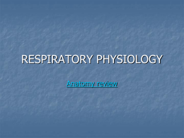 RESPIRATORY PHYSIOLOGY Anatomy review Pressures      Atmospheric pressure Alveolar pressure (intrapulmonary pressure)    Intrapleural pressure    Boyle's Law     More volume=less pressure Less volume=more pressure.