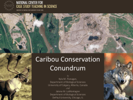 Caribou Conservation Conundrum by  Kyla M. Flanagan, Department of Biological Sciences University of Calgary, Alberta, Canada and Jalene M.