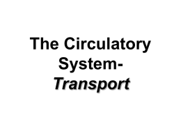 The Circulatory SystemTransport Absorption Involves the passage of materials into and out of the blood stream. Circulation Distribution of materials through out the body.