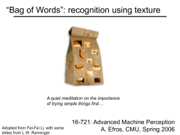 """Bag of Words"": recognition using texture  A quiet meditation on the importance of trying simple things first…  Adopted from Fei-Fei Li, with some slides."