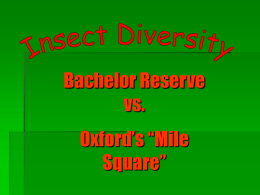 "Bachelor Reserve vs.  Oxford's ""Mile Square"" Introduction  Purpose - To study insect diversity in the Bachelor Reserve and the ""Mile Square"" to see whether or not human developments impact biodiversity."