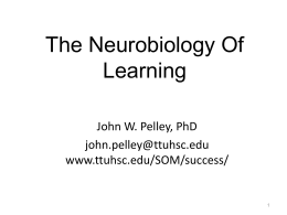The Neurobiology Of Learning John W. Pelley, PhD john.pelley@ttuhsc.edu www.ttuhsc.edu/SOM/success/ If you don't know where you are going, any path will take you there.