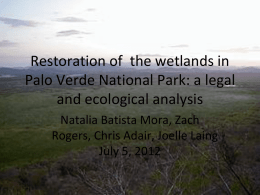 Restoration of the wetlands in Palo Verde National Park: a legal and ecological analysis Natalia Batista Mora, Zach Rogers, Chris Adair, Joelle Laing July 5,