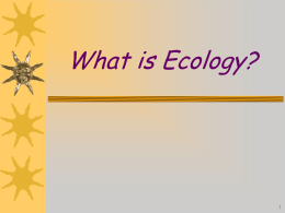What is Ecology? The study of the interactions between organisms and the living and nonliving components of their environment--INTERDEPENDENCE (interconnectedness)!!