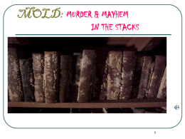 MOLD: MURDER & MAYHEM IN THE STACKS SICK BUILDINGS SICK PEOPLE SICK LIBRARIES & JUST PLAIN SICK OF IT ALL!