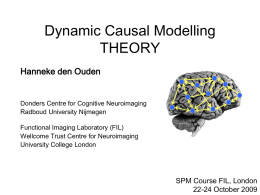 Dynamic Causal Modelling THEORY Hanneke den Ouden  Donders Centre for Cognitive Neuroimaging Radboud University Nijmegen Functional Imaging Laboratory (FIL) Wellcome Trust Centre for Neuroimaging University College London  SPM.