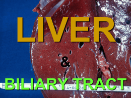 "Chapter 18  LIVER &  BILIARY TRACT DUCT SYSTEM N  O FIBROUS TISSUE PORTAL ""TRIAD""  CENTRAL VEIN PATTERNS OF HEPATIC INJURY  • Degeneration:  – Balooning, ""feathery"" degeneration, fat, pigment (hemosiderin, bile, both intrinsic)  • Inflammation: Viral."