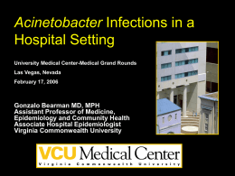 Acinetobacter Infections in a Hospital Setting University Medical Center-Medical Grand Rounds  Las Vegas, Nevada February 17, 2006  Gonzalo Bearman MD, MPH Assistant Professor of Medicine, Epidemiology and.