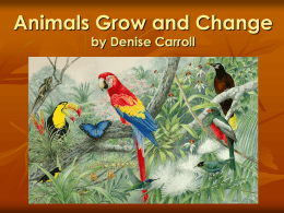 Animals Grow and Change by Denise Carroll What do animals need to live and grow? Fresh air  Food  Water  Shelter 