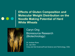 Effects of Gluten Composition and Molecular Weight Distribution on the Noodle Making Potential of Hard White Wheats Caryn Ong Bioresource Research (Biotechnology) Dr.