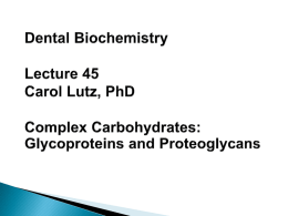         Differences between glycoproteins and proteoglycans Functions and structures of glycoproteins and proteoglycans Synthesis and degradation of glycoproteins and proteoglycans Pathology related to glycoproteins and proteoglycans.