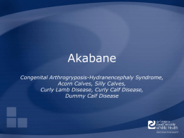 Akabane Congenital Arthrogryposis-Hydranencephaly Syndrome, Acorn Calves, Silly Calves, Curly Lamb Disease, Curly Calf Disease, Dummy Calf Disease.