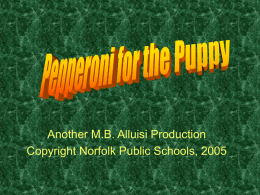 Another M.B. Alluisi Production Copyright Norfolk Public Schools, 2005 Directions • Clicking on the correct answer will allow the puppy one piece of.