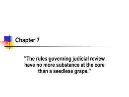 "Chapter 7 ""The rules governing judicial review have no more substance at the core than a seedless grape."""