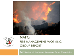 NAFC: FIRE MANAGEMENT WORKING GROUP REPORT 26th Session of the North American Forest Commission.
