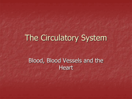 The Circulatory System Blood, Blood Vessels and the Heart C5: 5 types of Blood Vessels   a.