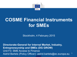COSME Financial Instruments for SMEs