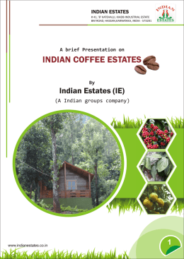 coffee estate for sale in sakleshpur 1 Acre or 2 acre High apperception value in future.
