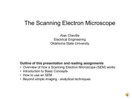 The Scanning Electron Microscope