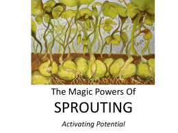 SPROUTING The Magic Powers Of Activating Potential