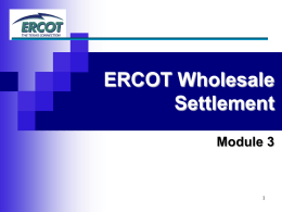 ERCOT Wholesale Settlement Module 3 1